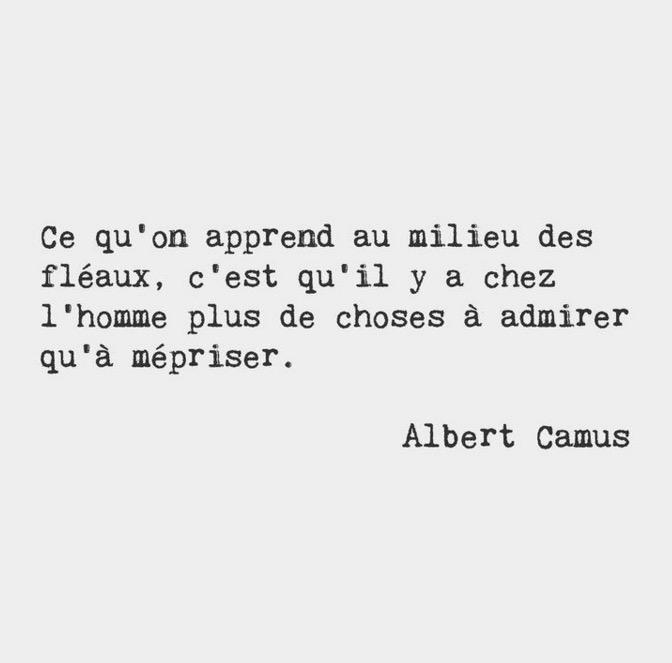 proverbes et citations Camus12
