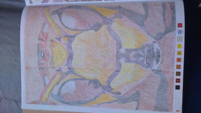 Coloriage anti stress  - Page 8 Dsc_0010