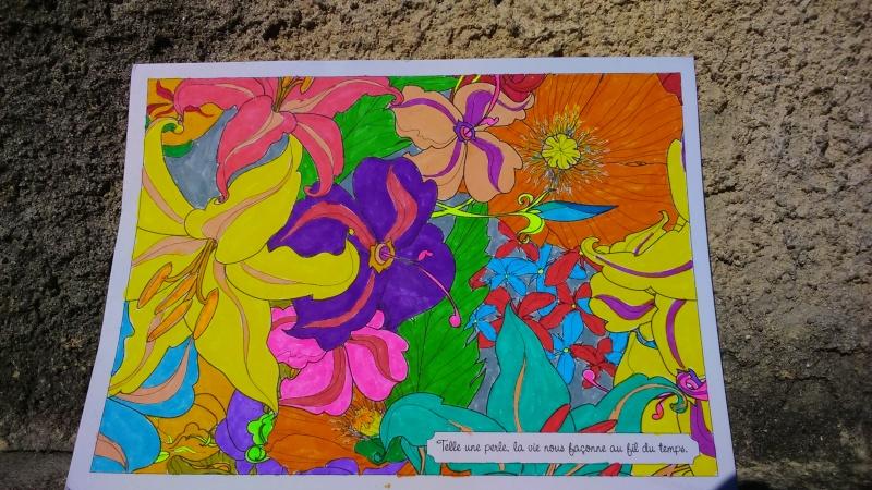 Coloriage anti stress  - Page 8 Dsc_0020