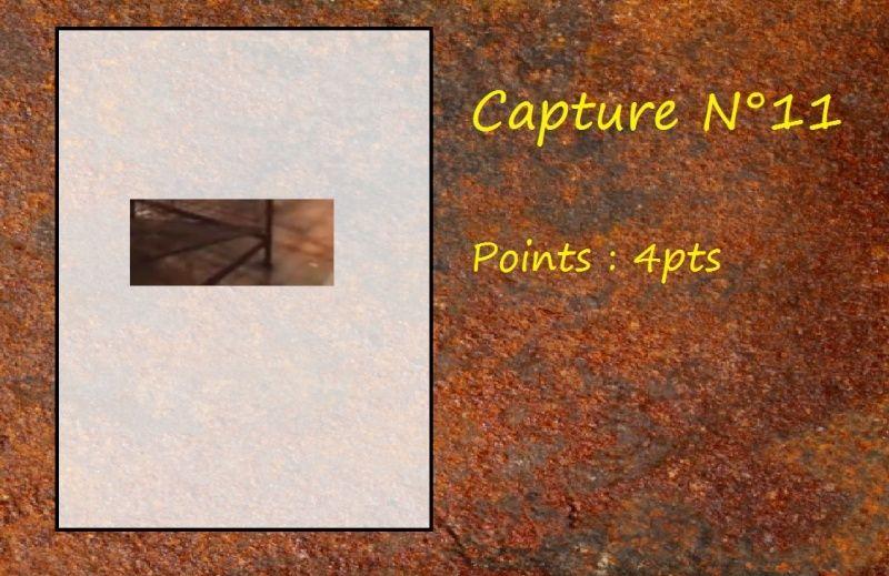 La Capture d'Image - Jeu à durée indéterminée  - Page 2 Capt1110