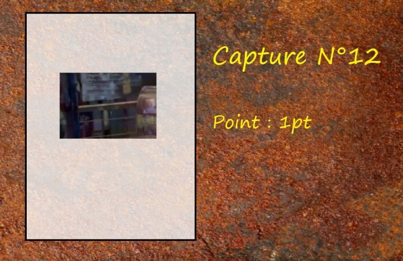 La Capture d'Image - Jeu à durée indéterminée  - Page 3 Capt1210