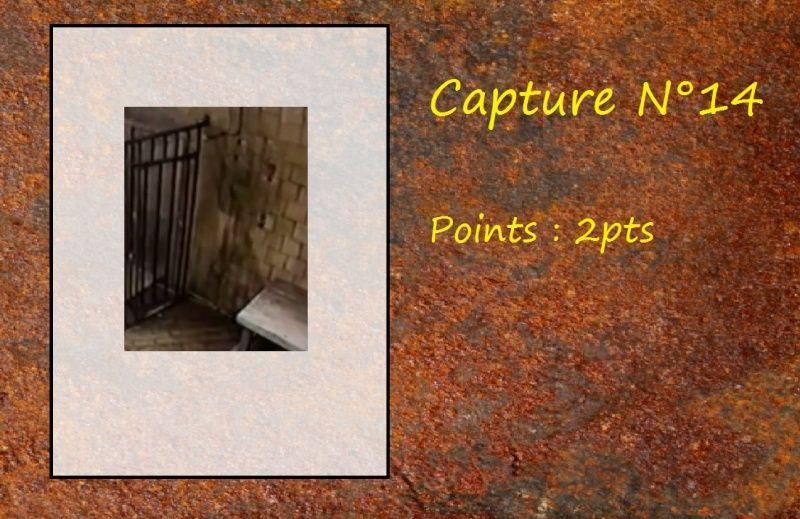 La Capture d'Image - Jeu à durée indéterminée  - Page 3 Capt1410