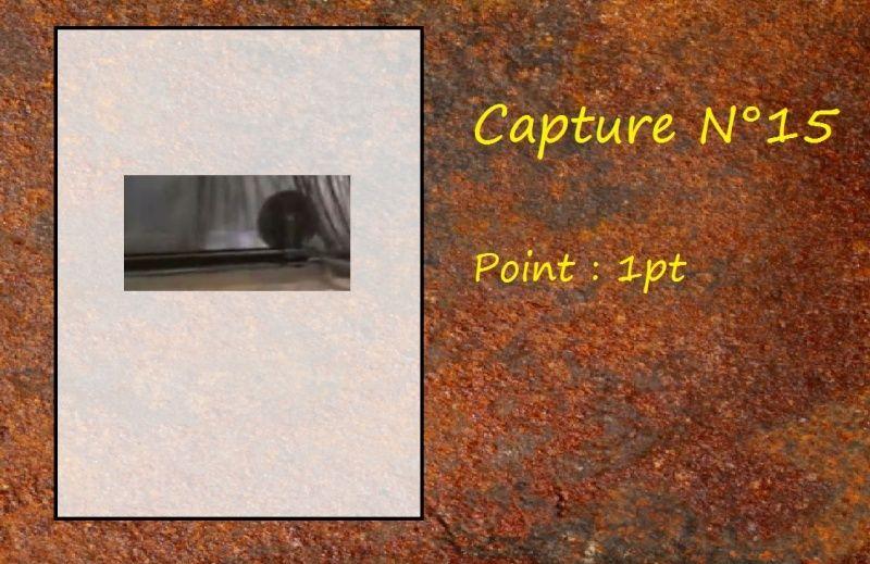 La Capture d'Image - Jeu à durée indéterminée  - Page 3 Capt1510