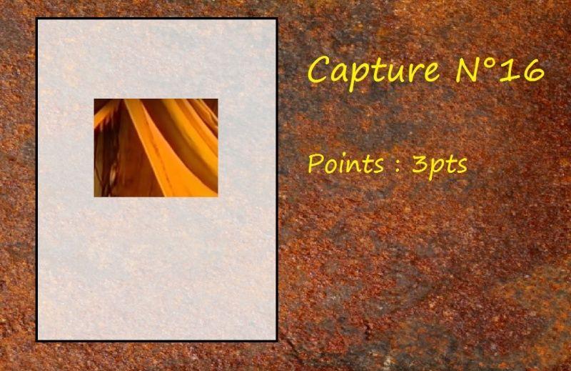 La Capture d'Image - Jeu à durée indéterminée  - Page 4 Capt1610