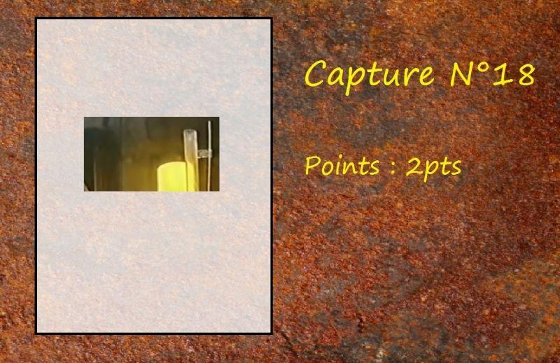 La Capture d'Image - Jeu à durée indéterminée  - Page 4 Capt1810