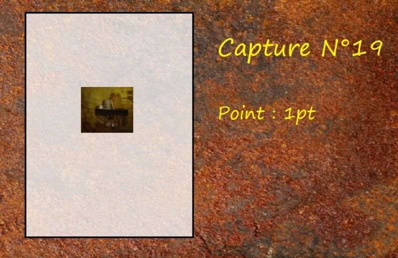 La Capture d'Image - Jeu à durée indéterminée  - Page 4 Capt1910