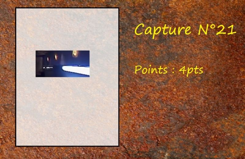La Capture d'Image - Jeu à durée indéterminée  - Page 5 Capt2110