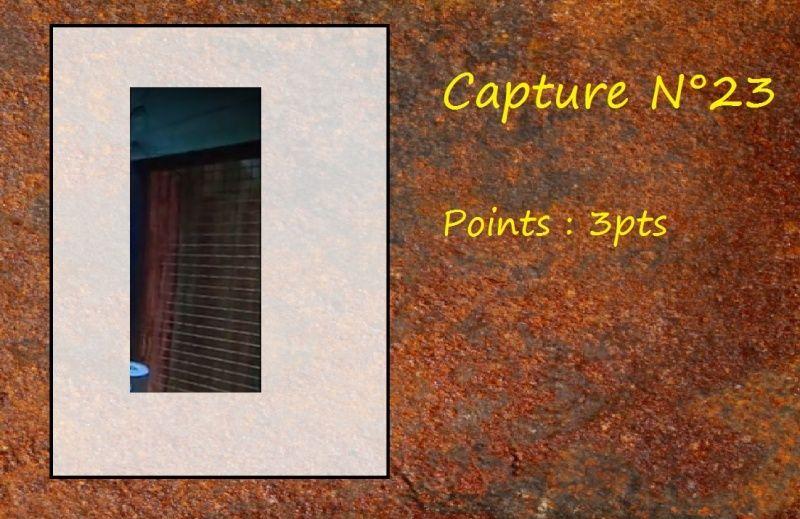 La Capture d'Image - Jeu à durée indéterminée  - Page 5 Capt2310