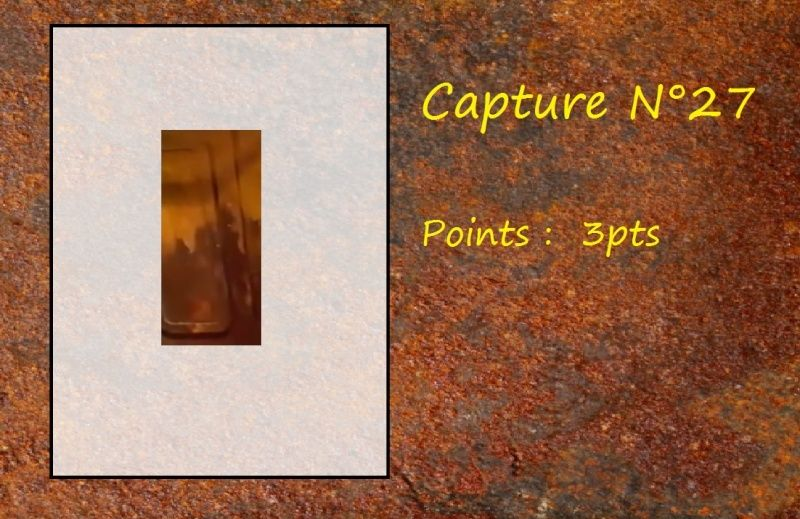La Capture d'Image - Jeu à durée indéterminée  - Page 6 Capt2710