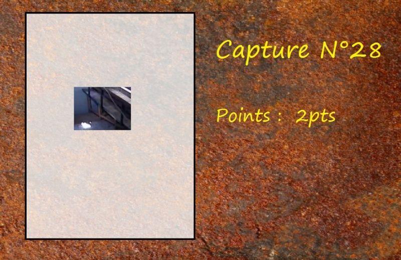 La Capture d'Image - Jeu à durée indéterminée  - Page 6 Capt2810