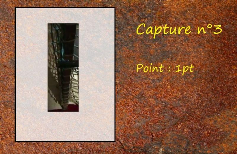 La Capture d'Image - Jeu à durée indéterminée  Capt310