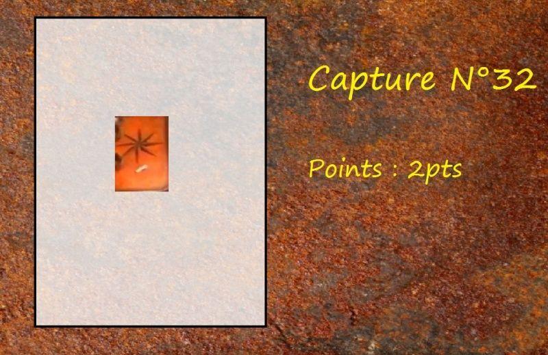 La Capture d'Image - Jeu à durée indéterminée  - Page 7 Capt3210