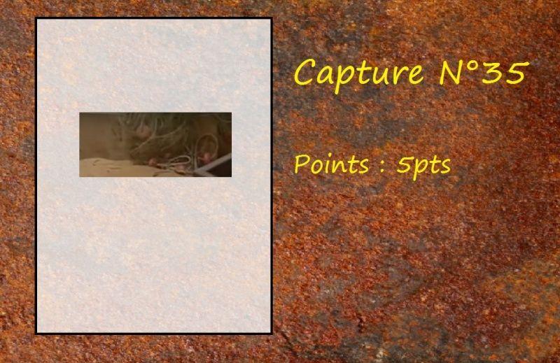 La Capture d'Image - Jeu à durée indéterminée  - Page 7 Capt3510