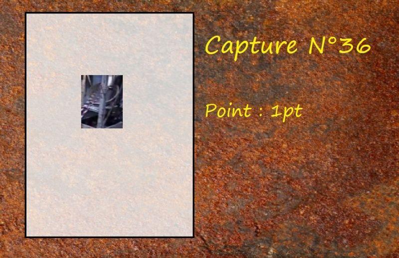 La Capture d'Image - Jeu à durée indéterminée  - Page 8 Capt3610