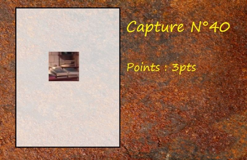 La Capture d'Image - Jeu à durée indéterminée  - Page 8 Capt4010