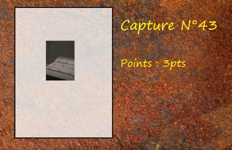 La Capture d'Image - Jeu à durée indéterminée  - Page 9 Capt4310