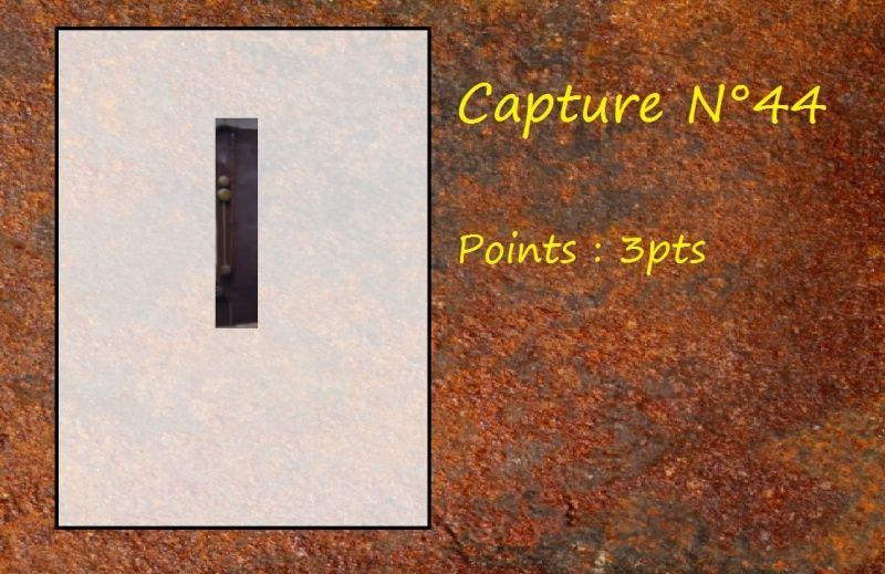La Capture d'Image - Jeu à durée indéterminée  - Page 9 Capt4410