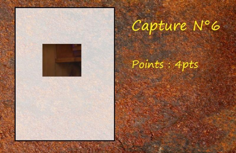 La Capture d'Image - Jeu à durée indéterminée  Capt610