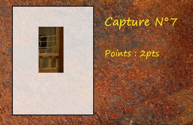 La Capture d'Image - Jeu à durée indéterminée  - Page 2 Capt711