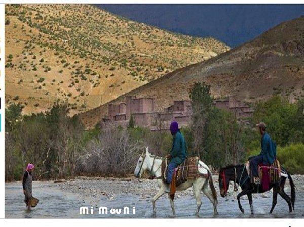 La valée d'Anergui a dos de mulet Anergu10