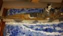 Bismarck & Admiral Scheer  Img_2017