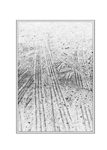 le sol, la pussiére 4310