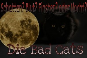 Die Bad Cats Picsar26