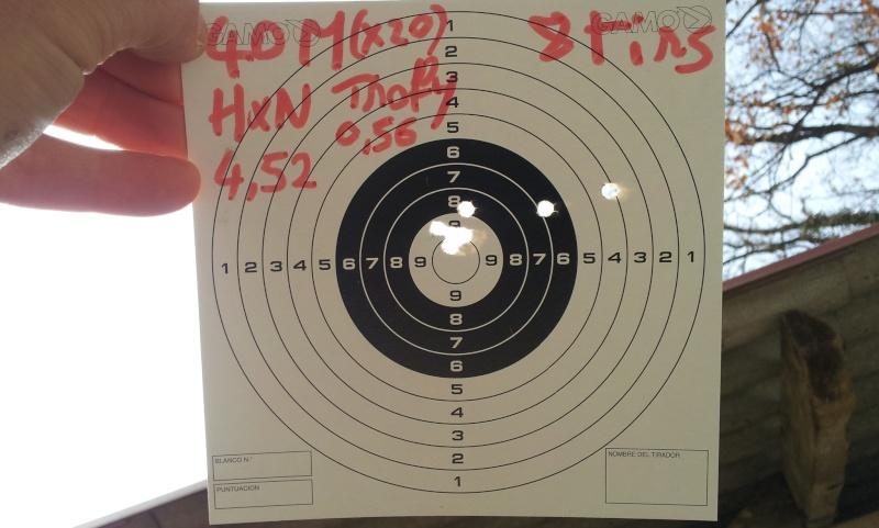 test de plombs JSB et H&N 40m Gamo Hunter IGT   Hn_tro11