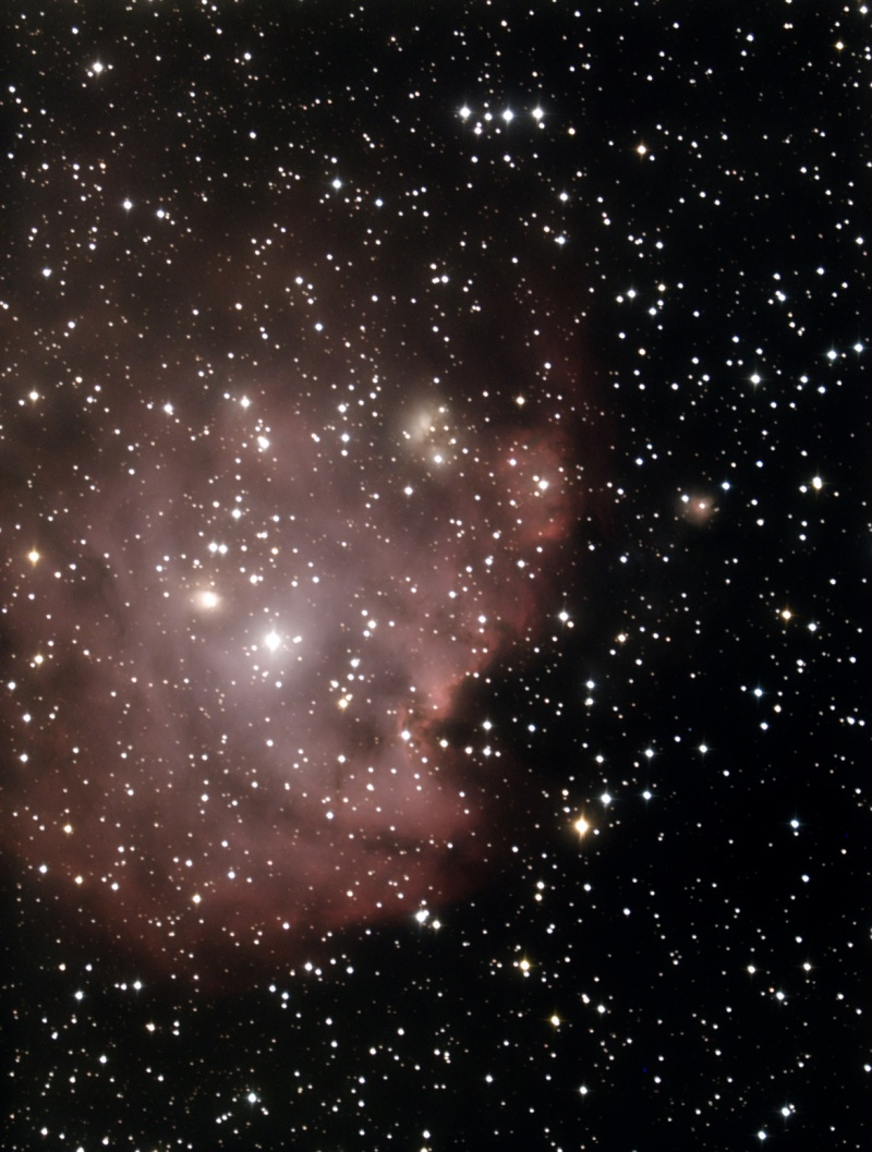 NGC 2175 traitement pixinsight premier essai  Integr10