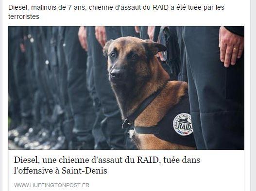 Assaut du raid à Saint-Denis Die10
