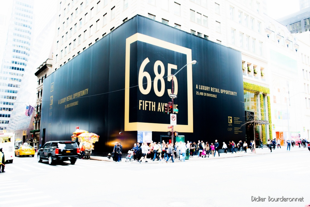 Fifth Avenue, New York _did9010