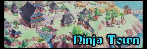 Ninja Town