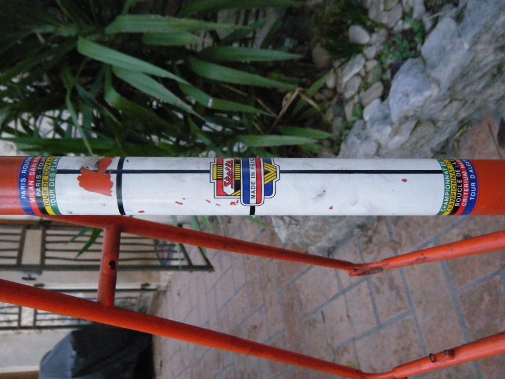 Stella 1975 Dscf7233