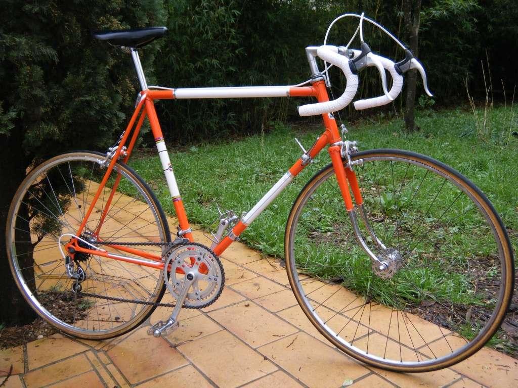 Stella 1975 Dscf7321