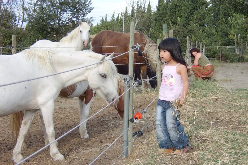 CONCOURS PHOTOS : le cheval et l'enfant - HOMMAGE !! Kimdro10