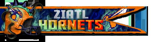 Les Franchises Cabalvision par roster Ziatl_17