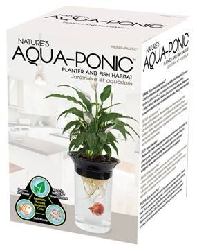 Système aquaponique (aquarium < > terrarium) 12647310