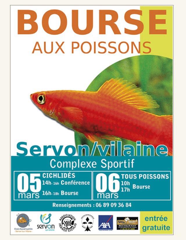 Bourse de servon sur vilaine (35) 5 et 6 mars 2016 Image19