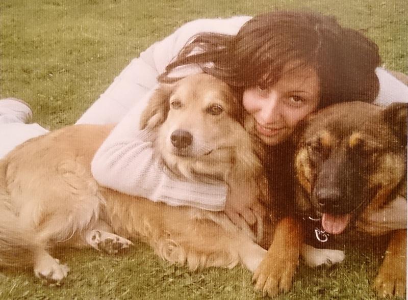 Mes chiens... Dsc_0412