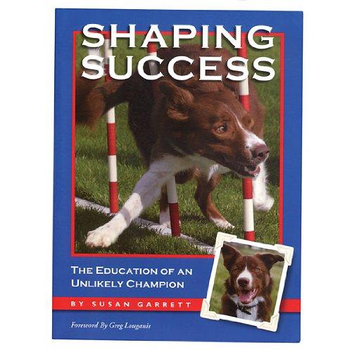 Shaping Success - Susan Garrett 51owsb10