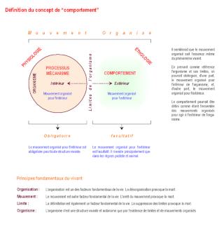 Philosophie de comptoir de la vie - Page 2 750px-11