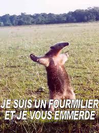 Féminité Image194