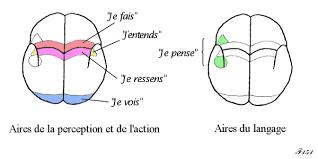 """la communication (dans tous ses supports et ses """"insupportables"""". Images53"""