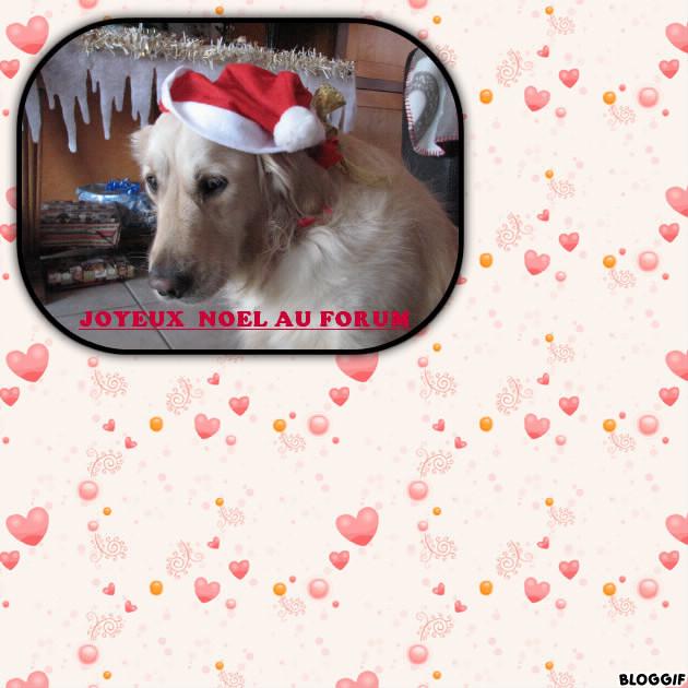 Joyeux Noël ! Bloggi10