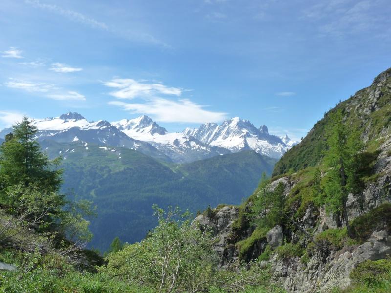 Camping Les Dômes de Miage - Page 4 P1000514