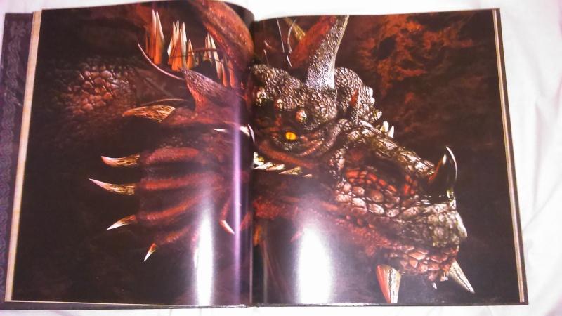 La collec' de Manu - Page 7 Dsc_1019