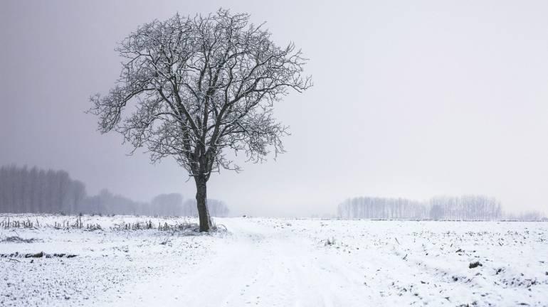 De la neige pour ce week-end ?? 8e7d2410