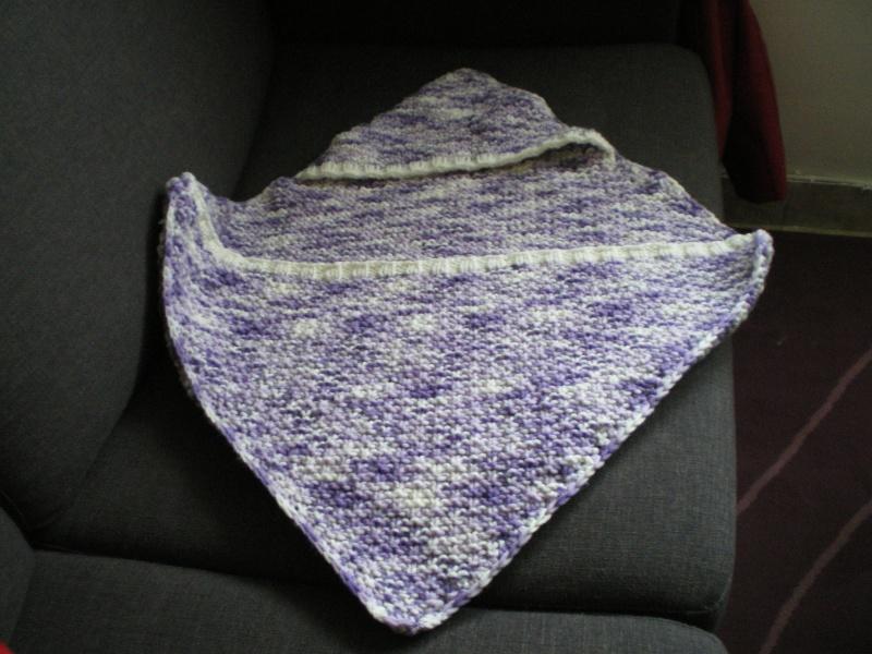 les tricots de babeth - Page 2 Imgp0015