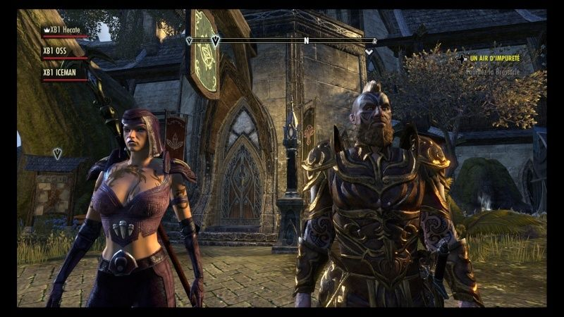 The Elder Scrolls Online : TESO - Nos personnages Teso_410