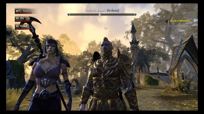 The Elder Scrolls Online : TESO - Nos personnages Teso_412